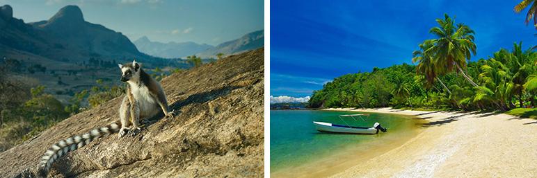 С Lenovo на остров лемуров - Мадагаскар!